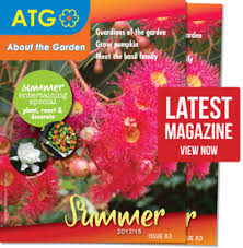best climbing flowers for spring about the garden magazine