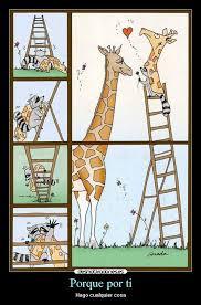 imagenes de amistad jirafas imágenes y carteles de jirafas desmotivaciones