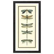 dragonfly bathroom decor tsc