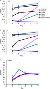 Carrageenan catabolism is encoded by a plex regulon in marine