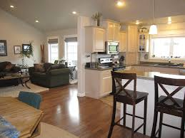 cool open kitchen and living room with kitchen cabinet and pendant