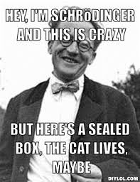 Call Me Maybe Meme - physics schrödinger s cat call me maybe meme canabalisticbanana