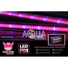 t5 vs led grow lights mojocow 2 x 7w t5 led propagation lights 2 x 7w