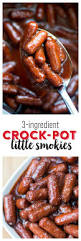 3 Crock Slow Cooker Buffet by Best 25 Crock Pot Appetizers Ideas On Pinterest Crockpot Mac