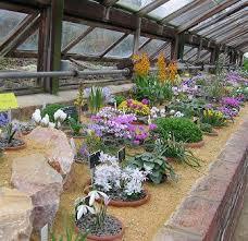 rock garden plants uk gardening articles about rock gardens page