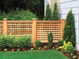 garden with lattice fences and climbing plants outdoor lattice