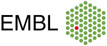 porsche logo vector embl u2013 european molecular biology laboratory logo eps pdf vector