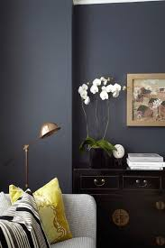 best 25 blue hallway paint ideas on pinterest hallway paint