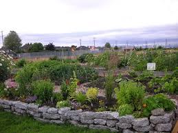 Rock Garden Tour by Check Out Our First Community Garden Tour That Bloomin U0027 Garden