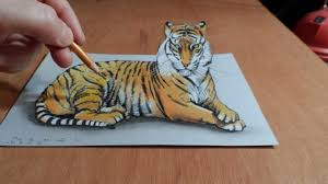 gallery how to draw a tiger drawing gallery