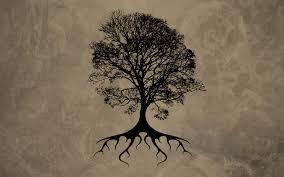 Oak Tree Drawing 40 Oak Trees Wallpapers
