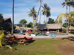 living and feeding gili air experience gili islands lombok