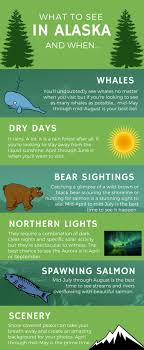 best time to cruise alaska northern lights 285 best unbelievable alaska images on pinterest alaska cruises