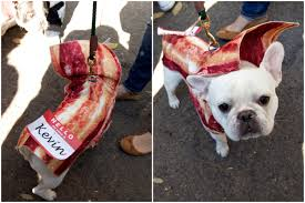 Halloween Bacon Costume Gallery Favorite Food Costumes Tompkins Square