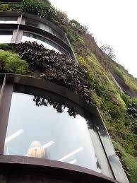 11 best vertical garden images on pinterest architecture