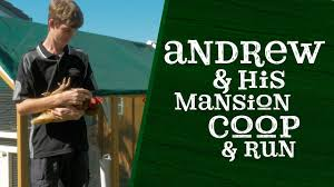 andrew and his mansion chicken coop and run youtube