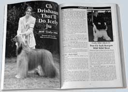 afghan hound racing uk what u0027s included the afghan hound year book