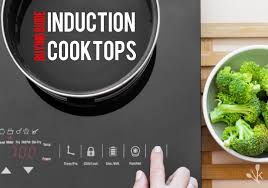 Electromagnetic Cooktop Best Induction Cooktop Reviews Kitchensanity