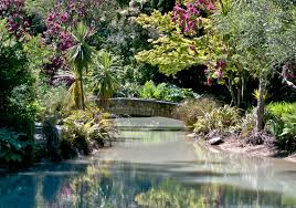 New Zealand Botanical Gardens Must See Spots In Christchurch New Zealand Turn Of The World