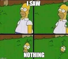 Simpsons Meme Generator - homer simpson in bush large meme generator imgflip