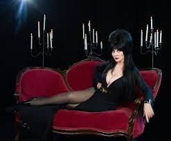 elvira mistress of the dark cassandra peterson interview time com