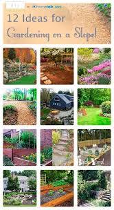 Landscaping Ideas For A Sloped Backyard Gardening On A Slope Idea Box By Diy Design Fanatic Diy Ideas