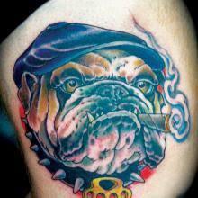 big tattoo planet colour bulldog cigar dog big tattoo planet