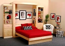 Cabinet Bed Frame Custom Fold Up Bed Lift Stor Beds