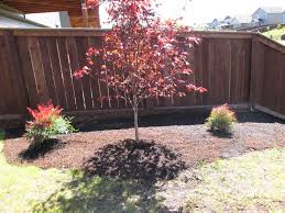 landscaping vancouver wa landscape design vancouver wa pruning and