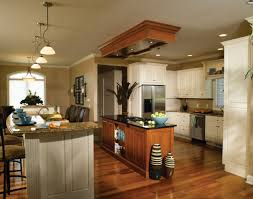 kitchen best kitchen cabinets lowes reviews amazing white