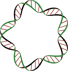 dna clipart gif free dna clipart gif