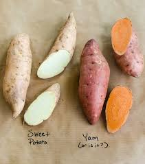 What Colour Is The South African Flag What U0027s The Difference Between Yams And Sweet Potatoes Kitchn