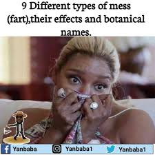 Mess Meme - 9 different types of mess fart their effects and botanical names