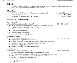 high resume sle for college admission fearsome grad schoolme objective sle for ojt hrm template