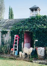 country style magazine we invited the source two merino ewes