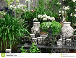 beautiful plants beautiful plants and ceramics in a flower shop royalty free stock