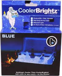 Trinity Stainless Steel Cooler With Shelf by Amazon Com Brightz Ltd Cooler Brightz Led Light Cooler