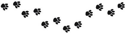 pawprints vero beach daycare