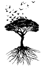 the strength of trees and the freedom of birds