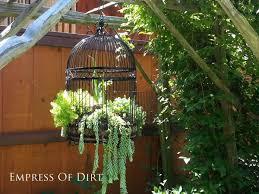Birdcage Decor For Sale Diy Succulent Garden Art Ideas Empress Of Dirt