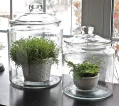 27 best the terrarium project images on pinterest indoor