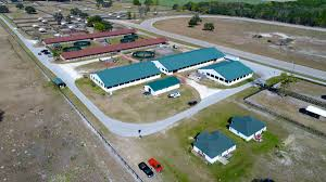 ocala horse farms ranches and stables for sale