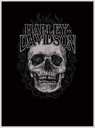 hd harley davidson skull harley harley davidson