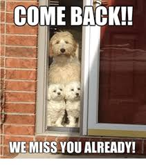 I Miss You Memes - come back we miss you already meme on me me