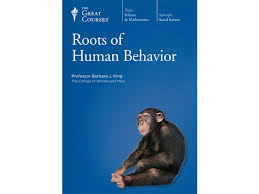 roots of human behavior prof king social science