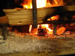 a mom u0027s year diy pinecone fire starters
