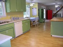quality of ikea kitchen cabinets smashing green kitchen cabinets