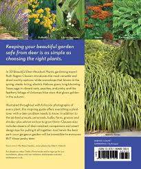 deer resistant native plants 50 beautiful deer resistant plants the prettiest annuals