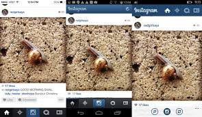 difference between iphone and android the not so subtle differences between instagram on ios android