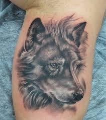 grey wolf on inner muscles tatuajes